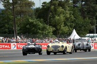 272 Austin Healey 100;225 Jaguar XK140 1955 Johns/Gibbon;254 Aston Martin DB3 1952 sn.DB3/5 Melling/Hall