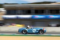 146 1964 Cobra 289 s/n CSX2323 - Chris MacAllister